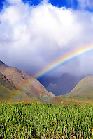 A rainbow over the West Maui Mountains and sugarcane fields commemorating the end of an era on Maui and in Hawai'i in general. This image was taken in November 2016, and the last fields were harvested in December 2016.