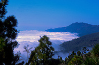 Mist and cloud over the forests of Caldera de Taburiente, La Palma, Canary Islands, Spain