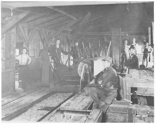 Pratt &amp; Woods sawmill at Ring, NM.  Interior view showing circular saw and crew.  Mill built ca. 1910.<br /> Cimarron &amp; Northwestern RR  Ring, NM  circa 1910-1920
