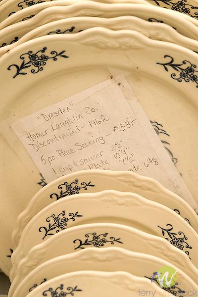 Dresden pattern dinnerware at flea market. Homer Laughlin Company.