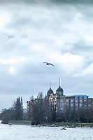 Hammersmith. London. United Kingdom,  Competitors pass by  &quot;Harrods Depository/Village&quot;. William Hunt Mansions. 2018 Men's Head of the River Race.  location Barnes Bridge, Championship Course, Putney to Mortlake. River Thames, <br /> <br /> Sunday   11/03/2018<br /> <br /> [Mandatory Credit:Peter SPURRIER Intersport Images]<br /> <br /> Leica Camera AG  M9 Digital Camera  1/750 sec. 50 mm f.9.5 160 ISO.  5.5MB
