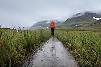 Hiker hiking in rain through grass in Tjäktjavagge near Sälka hut, Kungsleden trail, Lapland, Sweden