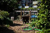 A community garden organized to produce organic food at Brooklyn in New York,  May 10, 2013, Photo by Eduardo Munoz Alvarez / VIEWpress.