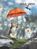 PAUL,REALISTIC ANIMALS, REALISTISCHE TIERE, ANIMALES REALISTICOS, paintings+++++NW_Fruit-Cat-G,USLGNW08,#a#, EVERYDAY ,funny photos