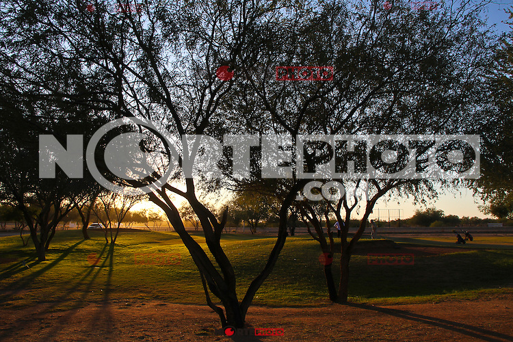 Sun falls at sunset between the Mezquite trees in the Golf Club in the desert Campestre REAL DEL 14, Hermosillo Sonora.<br /> (Photo by Luis Gutierrez / Norte Photo)<br /> sol cae al atardecer entre los arboles Mezquite en el  en el Club de Golf en el desertico Campestre REAL DEL 14, Hermosillo Sonora.<br /> (Photo by Luis Gutierrez/Norte Photo)