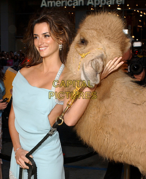 "PENELOPE CRUZ.Attends Paramount Pictures' Los Angeles Premiere of ""Sahara"" held at The Grauman's Chinese Theatre in Hollywood, Los Angeles, California, USA,.April 4th 2005..half length long blue silver diamante beaded dress camel animal funny.Ref: DVS.www.capitalpictures.com.sales@capitalpictures.com.©Debbie VanStory/Capital Pictures"