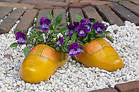 Symbolic wooden shoes in front of home, Zaanse Schans, Holland, Netherlands
