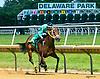 Sunshine Included winning at Delaware Park on 6/26/17