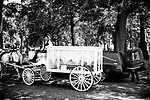 The casket one year-old Davell Gardner Jr. arrives by horse and carriage at the Evergreen Cemetery on July 27, 2020 in the Brooklyn borough of New York City.  Gardner was shot and killed earlier this month during a cookout in front of his home along with three others.  Photograph by Michael Nagle