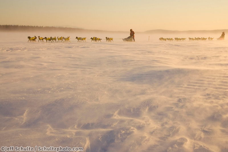 The Norwegian couple Tove Sorenson & Tore Albrighsen run on Yukon River in blowing snow 2006 Iditarod