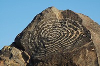 Hohokam petroglyphs, Signal Hill, Saguaro National Park, Arizona