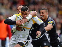 Falcons v Wasps 20160327