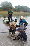 Melissa Miller & Team Bringing Leopard Shark From Pen For Photo ID