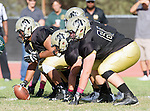 Palos Verdes, CA 10/07/16 - The Peninsula offensive line in position. in action during the CIF Bay League game between Mira Costa and Peninsula.