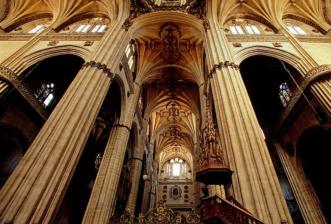 New Cathedral, Salamanca, Salamanca Province, Castile Leon, Spain, Europe