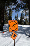 Ski trail at Donner Memorial State Park