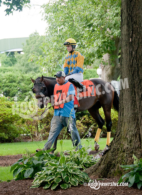 Broad Rule before The Hockessin Stakes at Delaware Park on 7/4/13