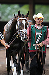 July 21, 2012  Love and Pride, trained by Todd Pletcher, walks in the paddock before competing in the Delaware Handicap at Delaware Park, Stanton, DE. She finished fourth in the race, which was won by Royal Delta. ©Joan Fairman Kanes/Eclipse Sportswire