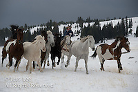 Cowboys in Winter