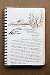 Great Bear Rainforest, Milne Island, Journal Art 2005, July 19th 2005, ink sketch,