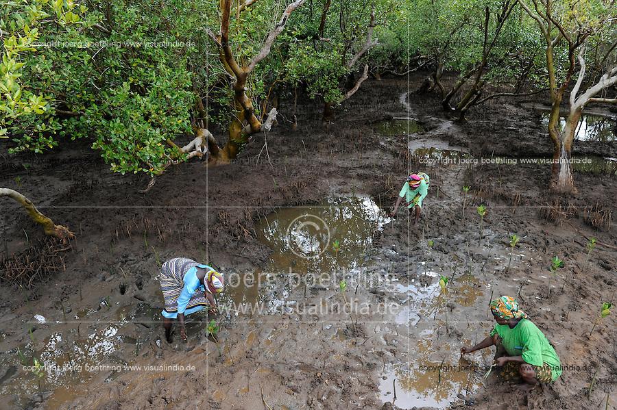 KENYA, Mombasa, Jimbo, planting of mangroves as coast protection / KENIA, Diakonie Projekt Kuestenschutz und Katastrophenprevention in der Kuestenregion bei Mombasa , Ort Jimbo , Frauen bei Mangrovenanpflanzung