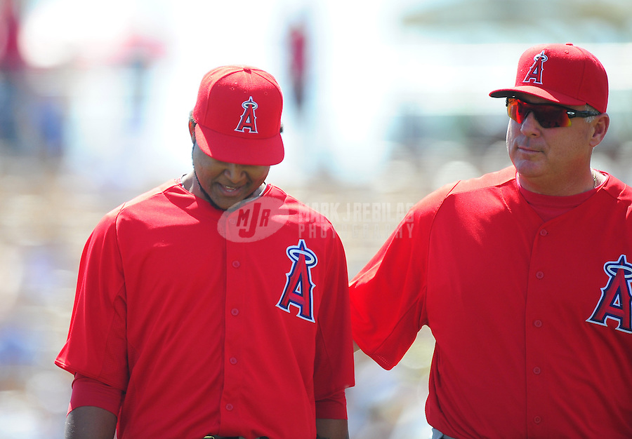 Mar. 14, 2012; Phoenix, AZ, USA; Anaheim Angels pitcher Ervin Santana (left) leaves the field with manager Mike Scioscia after being hit by a line drive in the second inning against the Chicago White Sox at The Ballpark at Camelback Ranch. Mandatory Credit: Mark J. Rebilas-