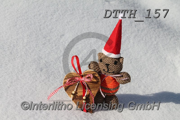 Helga, CHRISTMAS ANIMALS, WEIHNACHTEN TIERE, NAVIDAD ANIMALES, photos+++++,DTTH157,#xa#
