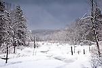 Wallace Brook, Ashburnham State Forest in Ashburnham, MA, USA