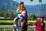 ARCADIA, CA - JUNE 02: Unique Bella #6 with Mike Smith up, wins the Beholder Mile Stakes at Santa Anita Park on June 02, 2018 in Arcadia, California. (Photo by Alex Evers/Eclipse Sportswire/Getty Images)