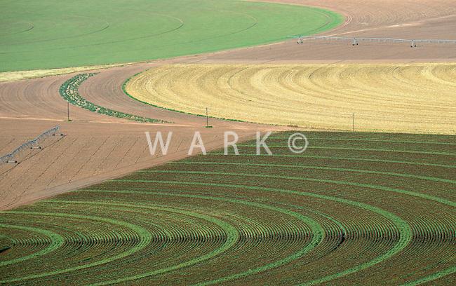 Farmland south of Amarillo, Texas.  Sept 2013. 84099