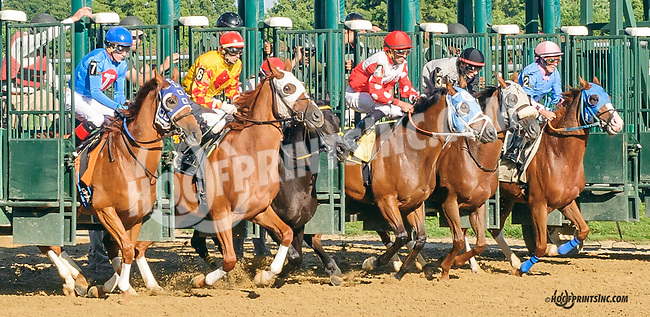 Dragon Attack winning at Delaware Park on 8/25/15