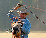Cowboy Photography Workshop   Erickson Cattle Co. ..Tim Hansen .. Photo by Al Golub/Golub Photography