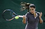 09.12.2014., Croatia, Zagreb - die heute 16 jährige Ana Konjuh (* 27. Dezember 1997 in Dubrovnik) ist eine kroatische Tennisspielerin, die am liebsten auf Hartplätzen spielt, begann im Alter von fünf Jahren mit dem Tennisspielen.<br /> Ihren Durchbruch bei den Mädchen hatte sie 2013 mit Siegen bei den Australian Open und den US Open im Einzel sowie im Doppel bei den Australian Open. Konjuh spielte im Februar 2013 in Eilat gegen Weißrussland erstmals für Kroatien im Fed Cup.<br /> Ihren ersten ITF-Titel gewann sie bei dem mit $25.000 dotierten Turnier in Montpellier im Juni 2013. Obwohl sie noch bei den Junioren spielberechtigt ist, will sie ab der Saison 2014 nur noch Turniere auf der Profitour spielen.[1]<br /> Bei den Australian Open 2014 spielte sie gleich bei ihrer ersten Teilnahme an einem Grand-Slam-Turnier mit drei Siegen eine erfolgreiche Qualifikationsrunde. Im Hauptfeld traf sie dann auf die spätere Siegerin Li Na, der sie mit 2:6 und 0:6 unterlag <br /> <br /> Foto ©  nph / PIXSELL / Igor Kralj
