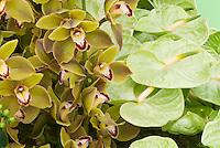 Orchids & Anthurium Flower Arrangement