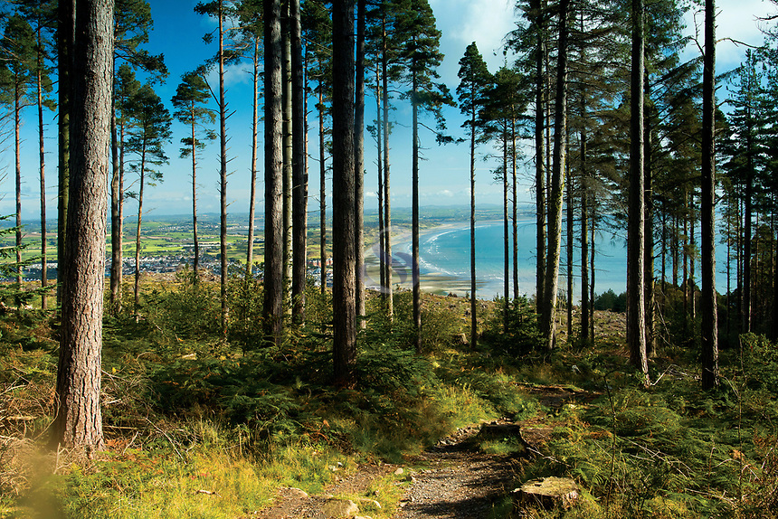 Dundrum Bay from the Slieve Donard Path, Mourne Mountains, Newcastle, County Down