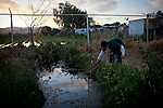 Seven-year-old Naftale Gutierrez plays in raw sewage that flows from the Rancho Garcia trailer park onto adjoining agricultural land in Thermal, Calif., March 8, 2012.