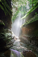 &quot;Turkey Run Mist&quot;<br />