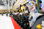 ADRIAN, MI - MARCH 18: Adrian College watches the game from the bench during the Division III Women's Ice Hockey Championship held at Arrington Ice Arena on March 19, 2017 in Adrian, Michigan. Plattsburgh State defeated Adrian 4-3 in overtime to repeat as national champions for the fourth consecutive year. by Tony Ding/NCAA Photos via Getty Images)