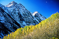 Fall foliage near Maroon Bells, outside Aspen, Colorado USA