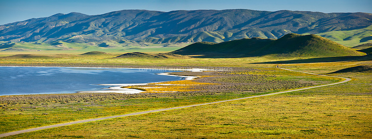 Soda Lake and southern Caliente Range in the Carrizo Plain; roughly 50 miles (80 km) long and up to 15 miles (24 km) across. Contains the 250,000 acre (1,012 km²; 101,215 ha) Carrizo Plain National Monument (Est. 1/17/2001), largest single native grassland (San Joaquin Valley biogeographic province) remaining in California. San Luis Obispo County, CA.
