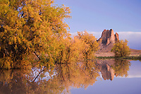 Rocks reflecting in pond with Salt Cedars at dusk,Shiprock, Navajo Indian Reserve, New Mexico, USA