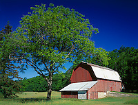 Sleeping Bear Dunes National Lakeshore, MI<br /> Historic red barn on the Northland Hwy in Leelanau County