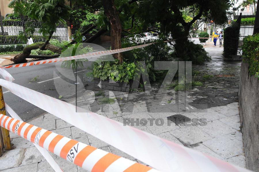 SAO PAULO, SP, 17 Janeiro 2012Queda de arvore na rua Maria Figueiredo no Bairro Siqueira Cesar.  .  (FOTO: ADRIANO LIMA - NEWS FREE)