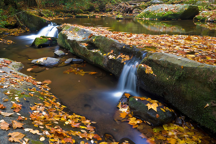 Leaf-covered boulders and waterfalls in the fall along the Middle Prong of the Little River; Great Smoky Mountains National Park, TN