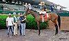 Just Got Out winning at Delaware Park racetrack on 6/10/14
