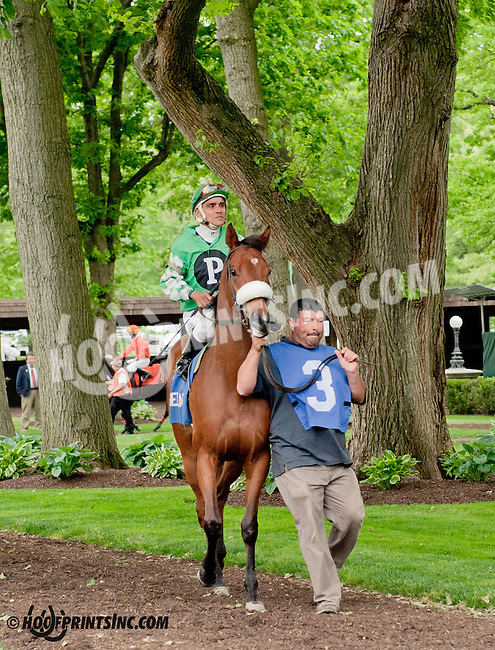 Missy Rules before The Our Mims Stakes at Delaware Park on 5/18/13
