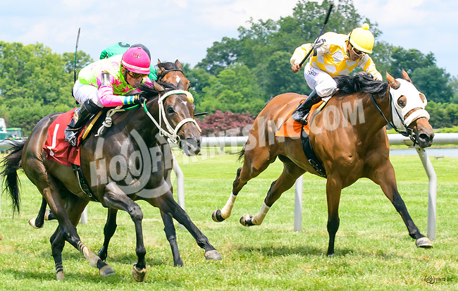 Ellie Girl winning at Delaware Park on 7/1/17