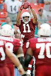 11/7/04 -- Gene Lower / Slingshot -- Arizona Cardinals rookie wide receiver Larry Fitzgerald (11) makes the game winning touchdown catch late in the game in Miami against the Dolphins. The Cardinals beat the Dolphins in the final minute of the game 24 - 23.