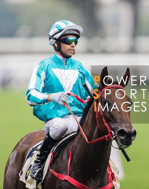 Horse Household King ridden by Joao Moreira wins the Race 4, Lung Wui Handicap, at the Sha Tin Racecourse on 03 September 2017 in Hong Kong, China. Photo by Marcio Rodrigo Machado / Power Sport Images