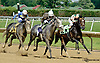 South Andros winning The Justakiss Stakes at Delaware Park racetrack on 6/5/14